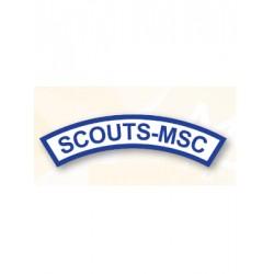Pin Scouts MSC